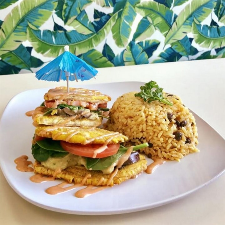 The Best Vegan Food In America Tropicaleo
