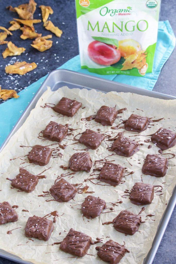 Chocolate mango squares